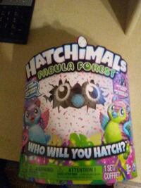 Hatchimals fabula forest Lethbridge, T1H