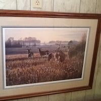 Meadow Magic. custom Picture Framing..........Enola Enola, 17025