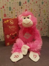 Personalized Teddy and truffle V-day gift