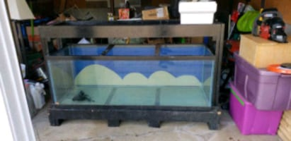180 gallon tank double stand set up