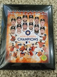 Astros World Champions Collections frame