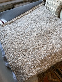 Super soft 5x7 clean area rug Alexandria, 22307