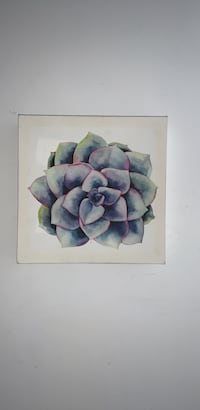 Succulent Canvas Painting SMALL Linden, 07036