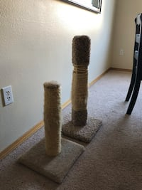 Cats Scratching Posts Beaverton, 97007