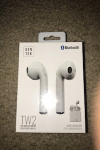 TW2 wireless earbuds with charger case