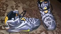 LeBron's Youth size 7 Triangle, 22172