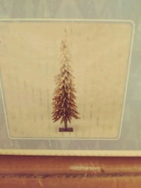 Ombre Christmas tree Louisville, 40291