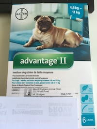 Advantage flea meds (6months) Strathroy-Caradoc, N0L