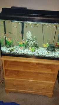 Fish tank with stand Lincolnia, 22312