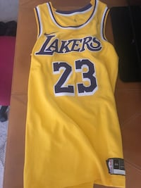 Lebron James Laker Jersey Lorton, 22079