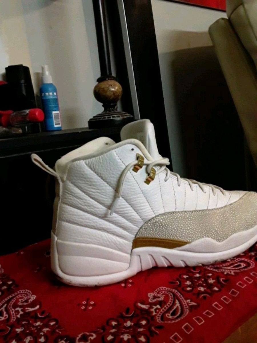 Photo Jordan retro 12 ovo edition