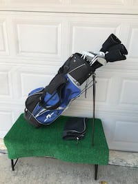 Complete 14 Club Golf Set with Tour Eagle Stand Bag Houston, 77064