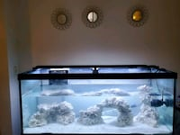 55 gallon aquarium w/ stand and everything you need to get started! Cleveland, 44120