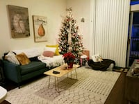 APT For Rent 1BR With $500 Rebate Houston
