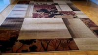 Carpet Area rug in great condition Vaughan, L4K 5M5