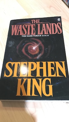 the waste land by stephen King book