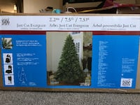 Brand New Just Cut Evergreen Christmas Tree Calgary, T1Y 5T9