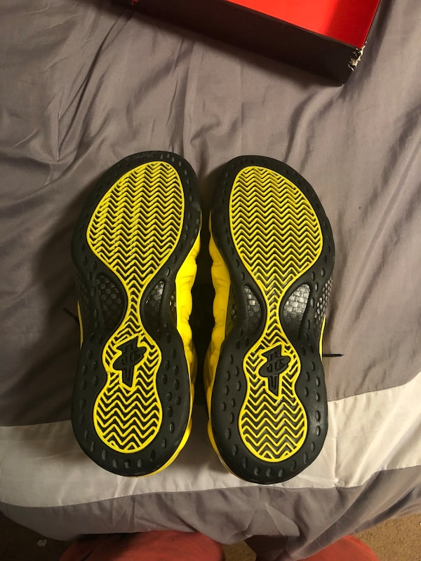 wholesale dealer ef96c 6f2be Nike foamposite wu tang size 12