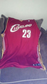 red and white Cleveland Cavaliers Lebron James jersey Cave Spring, 24018