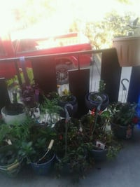 JUST REDUCED....Huge Moving Sale & FREE Stuff. Greater Sudbury, P3E