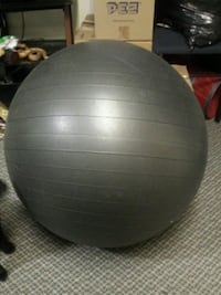 Exercise Ball 539 km