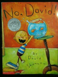 Book: No, David! Green Bay, 54311