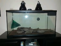 40 gallon Desert Reptile Kit Chicago, 60620