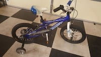 toddler's blue Schwin bicycle