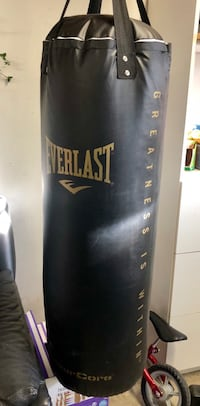 Everlast Heavy Punching Bag 2375 mi