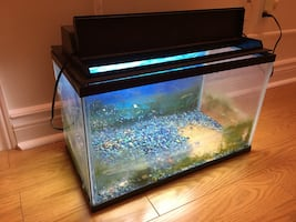 Fish tank (•With lighting canopy•)