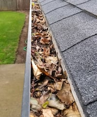 Gutter cleaning services?? Portland