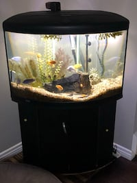 45 gallon fish tank, stand, fish and all equipment Thousand Oaks, 91361