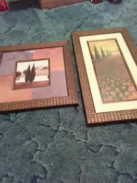 two paintings of trees with brown wooden frames Johnson City, 37615