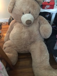 brown and white bear plush toy Chicopee