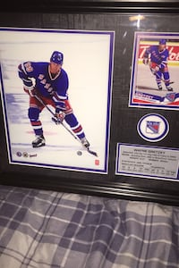 Wayne Gretzky framed photo and Card with stats .