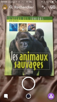 Les Animaux sauvages DVD
