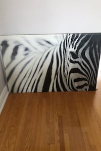 IKEA Mounted Zebra Photo