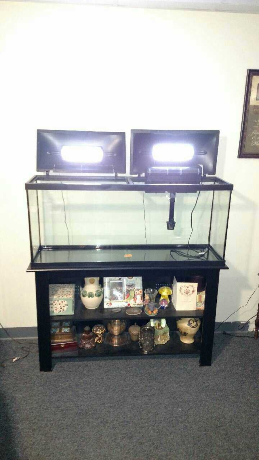 Used 55 gal tank led hood stand and accessories in dodge city for 55 gallon fish tank led light hood