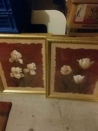 two brown wooden framed paintings of flowers Sparks, 89436