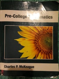 Pre College math-31 book. gently used and clean pages