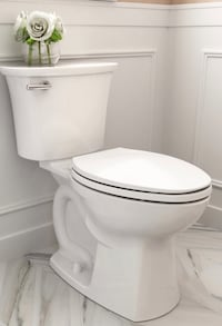 Toilet/Faucet and Vanity Installation