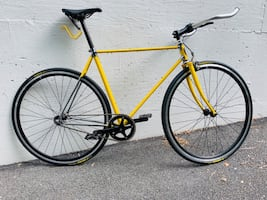 17T Lugged SingleSpeed