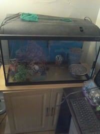 Fish tank with accessories and stand