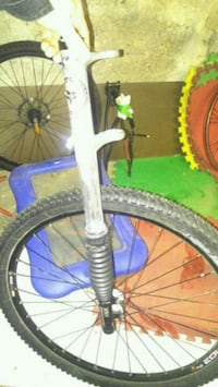 Carbondale lefty front shock and wheel.