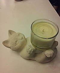 CAT HOLDING A CANDLE Tampa, 33618