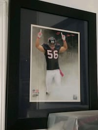 Brian Cushing framed picture  Houston Texans  Houston