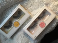 HQ House of Lashes in Marigold and Sweetpea Toronto, M6M 1C8