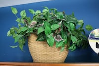 Large Wicker Basket w/ Artificial Plant Ashburn