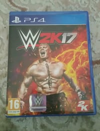 Sony PS4 WWE 2K17 kılıfı 8333 km