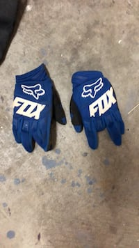 pair of blue-and-white gloves Maple Ridge, V2X 0V6